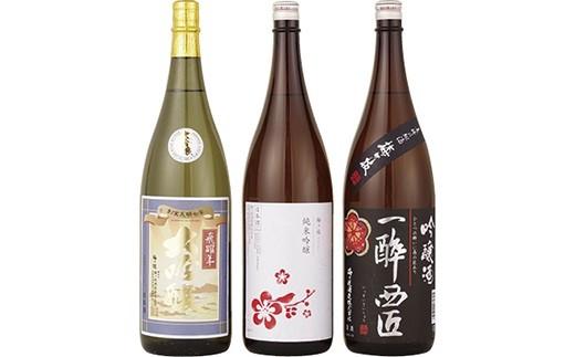 T114 数量限定!大吟醸・純米吟醸・吟醸酒の贅沢一升瓶3本お得セット【900pt】