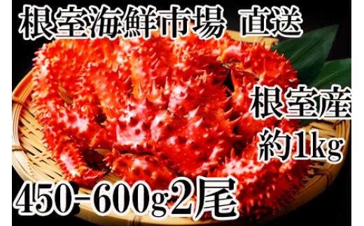 CA-60053 【北海道根室産】根室海鮮市場<直送>浜ゆで花咲がに450~600g×2尾