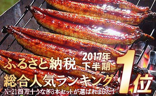 【感謝祭】【限定:11月30日まで】 四万十うなぎ蒲焼き3本セット Esu-0301