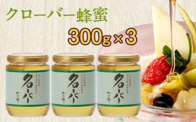 DJ04 クローバー蜂蜜【CC300g×3個】