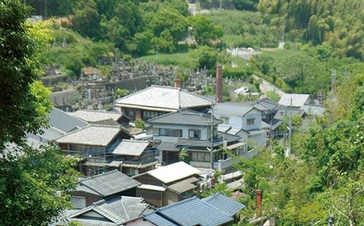 海風の国観光マイスターと巡るタクシープラン平戸藩の御用窯みかわち焼コース