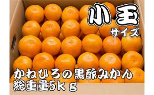 A-97 かねひろの黒酢みかん(小玉)5kg