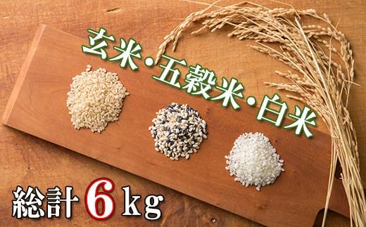【D10】【定期便&小分け】酵素で育てた南房総ミネラル米