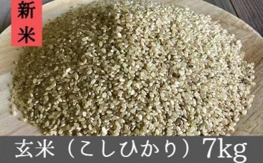 B-274 平成30年産 宮崎県産 獲れたて玄米 7kg【5,000pt】