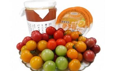 「栗林農園」素のままパスタソースとカラフルミニトマト詰合と伊予柑ゼリーのセット