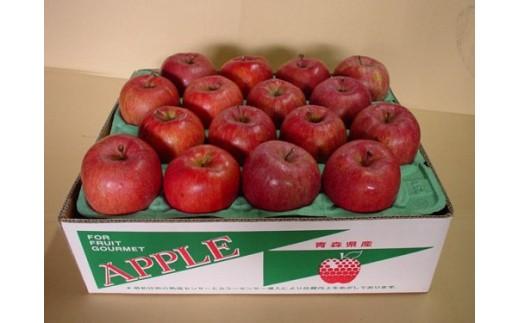 【30-B024】青森県産りんご5kg家庭用