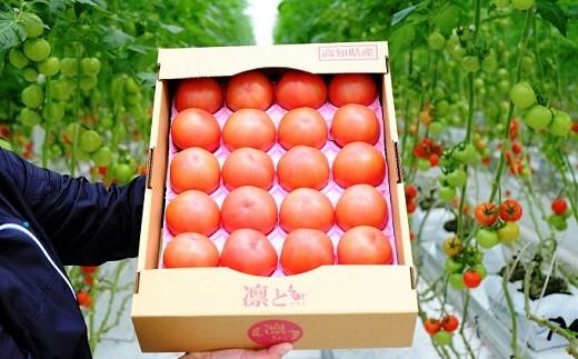 Fbg-03 【大容量4.0キロ】四万十育ちのトマトで毎日笑顔!