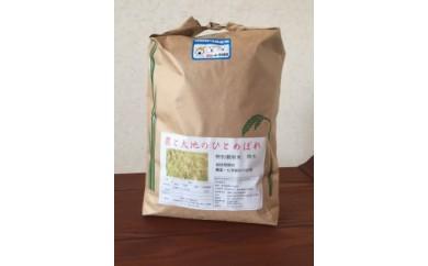 AD7021-C【平成30年産】ひとめぼれ5kg・宮城県認証農薬不使用米