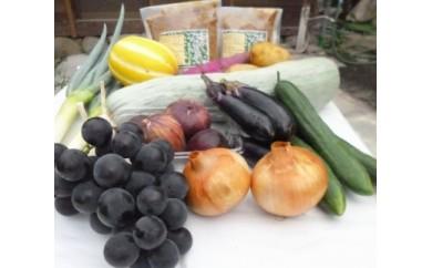 手づくり青大豆味噌2袋と季節の野菜