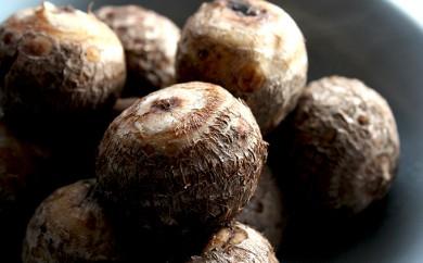 [№5884-0199]【減農薬、減化学肥料】麦田さんの農産物 里芋 10kg