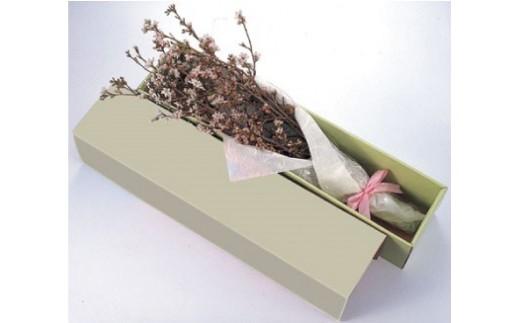 B4N02・敬翁桜