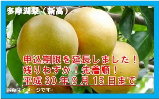 [8A-3]【残りわずか!】東大和の恵み 甘みぎっしり多摩湖梨(新高)