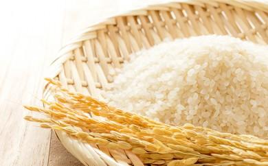 [№5884-0201]麦田さんの農産物 コシヒカリ玄米30kg