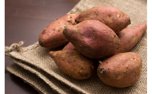 【A14019】鹿児島県産「濃密厳選安納芋」約10kg<先行予約>