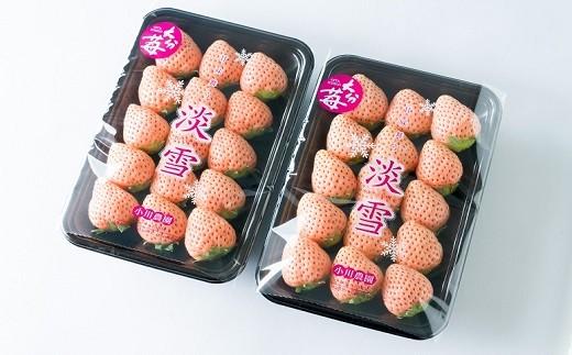 C-01 【先行予約】白いちご「淡雪」・2パック入×1箱