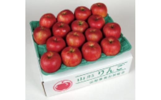 B6N01・ふじりんご