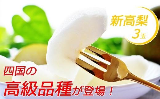 Cyn-02 四国の高級品種が登場!山﨑梨園の新高梨 2.5㎏(3玉)