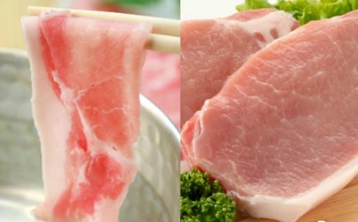 【お歳暮OK】【鹿児島県産】茶美豚 しゃぶしゃぶ用 & とんかつ用 1.8kg
