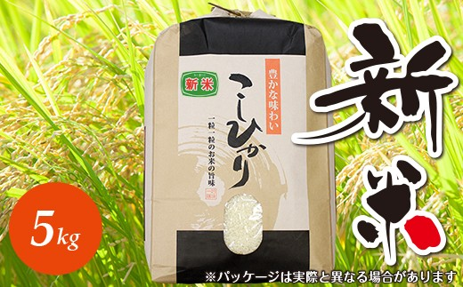 ☆平成30年 千葉県産「コシヒカリ」5kg(精米)