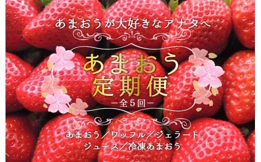 E039.【あまおうが大好きなアナタへ】あまおう定期便(全5回)