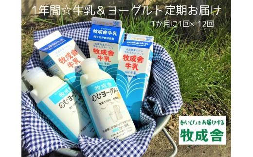飛騨産生乳100%で作る低温殺菌牛乳&無添加飲むヨーグルト12か月定期お届け[G0012]