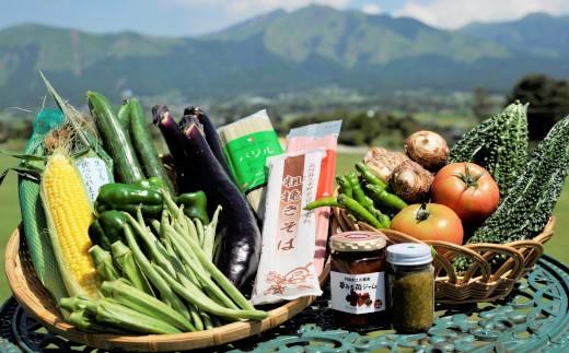 [F050-205010]新鮮旬の野菜(5種~8種)+特産品セット【道の駅あそ望の郷くぎの】