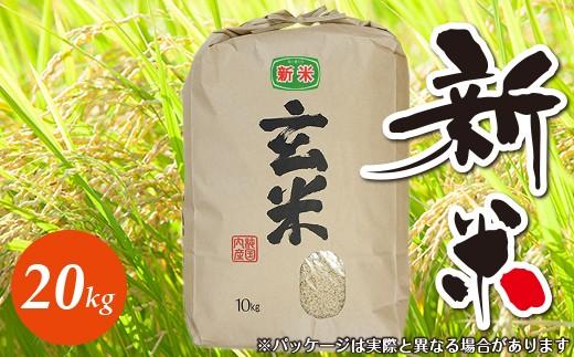 ☆平成30年 千葉県産「コシヒカリ」20kg(玄米)