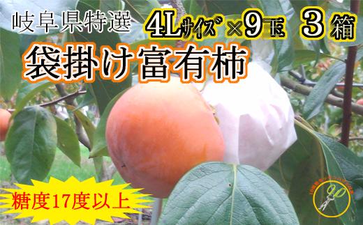 【49060】岐阜県産贈答用特選袋掛け特別富有柿4Lサイズ糖度17度以上