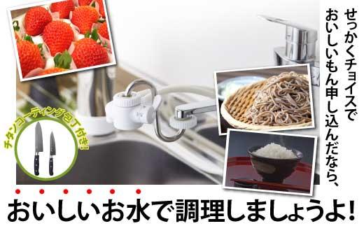 【100071】浄水器でうまいもんを楽しむ!米や野菜等素材の味を損ねず料理