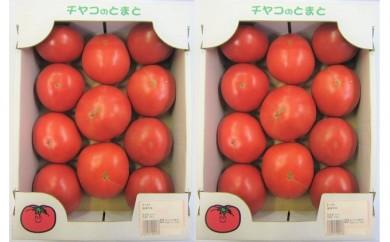 [№5739-0392]福津産★箱詰めトマト 2箱セット