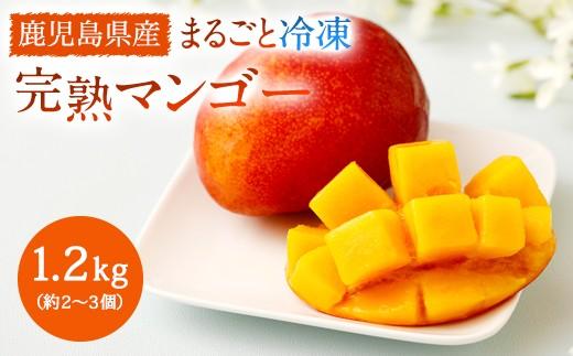 【A-405】鹿児島県産南国の恵みまるごと冷凍完熟マンゴー 1.2kg