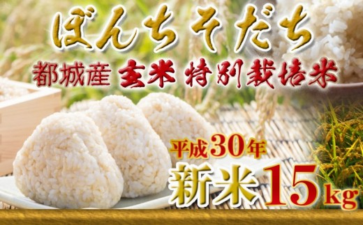 MK-3803_都城産玄米特別栽培米「ぼんちそだち」15kgセット