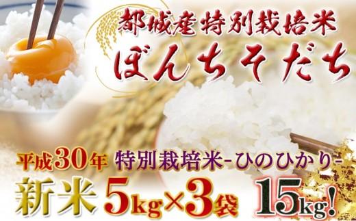 MK-3804_都城産ひのひかり特別栽培米「ぼんちそだち」15kgセット