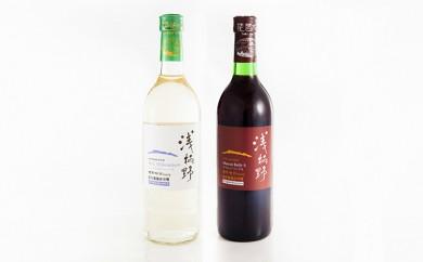 [№5900-0196]浅柄野ワイン2本セット