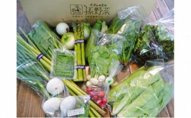 [№5895-0194]安芸高田市の小さな農家お届けするふるさと旬野菜セット