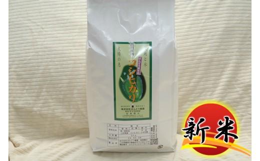 A30-033 特別栽培米コシヒカリ(7kg)