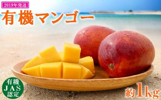 【有機JAS認定】有機マンゴー1kg 2~3玉【2019年発送】