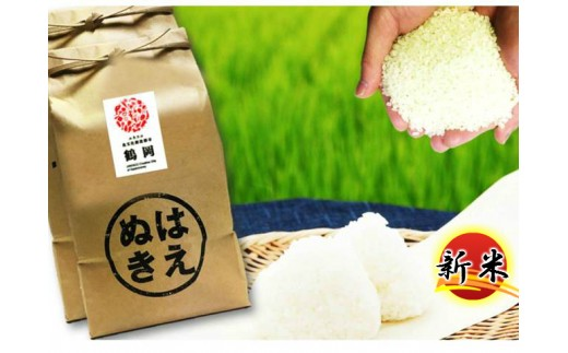 N30-002 特別栽培米はえぬき(10kg)