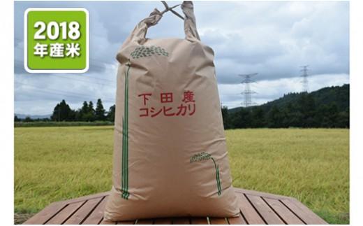 【03-038】しただ産地域こだわり玄米コシヒカリ30kg※クレジット決済限定