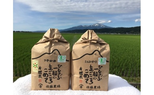 NB460 平成30年産 有機栽培米 つや姫 3kg、コシヒカリ 3kg YU
