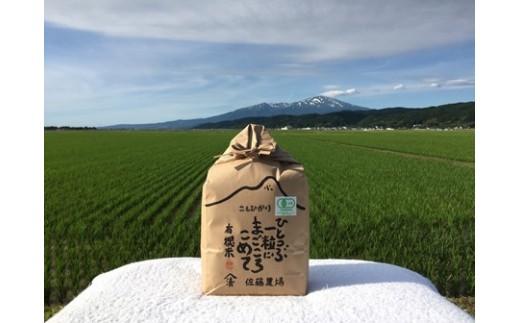 NA419 平成30年産 有機栽培米 コシヒカリ 3kg YU