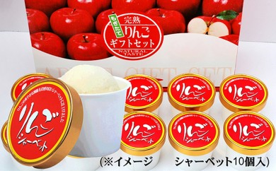 オリジナル りんごシャーベット 110g×10個入