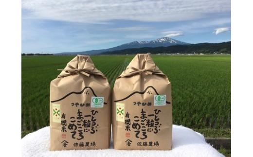 NB461 平成30年産 有機栽培米 つや姫 6kg YU