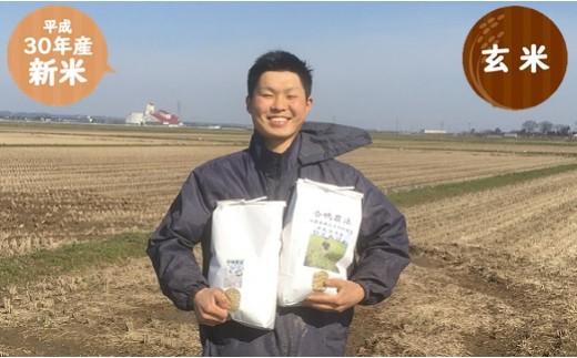 023 ①十代目又七の【30年産・玄米】無農薬・無化学肥料栽培 ひとめぼれ10kg