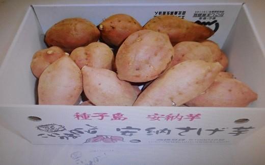 特典番号74.REIMEI種子島安納芋(生芋)5kg 300pt