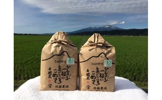 NB459 平成30年産 有機栽培米 コシヒカリ 6kg YU