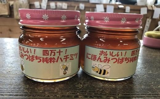 295.【国産】日本ミツバチのはちみつ 600g(300g×2本)