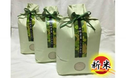 B30-010 特別栽培米コシヒカリ(15kg)