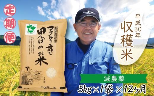 K-2  【H30新米】定期便 村上ファーム  特別栽培米コシヒカリ5㎏×12ヶ月