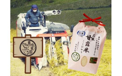 B081①【玄米】 農薬・化学肥料不使用米「三瓶甘露米こしひかり」(平成30年産)5kg